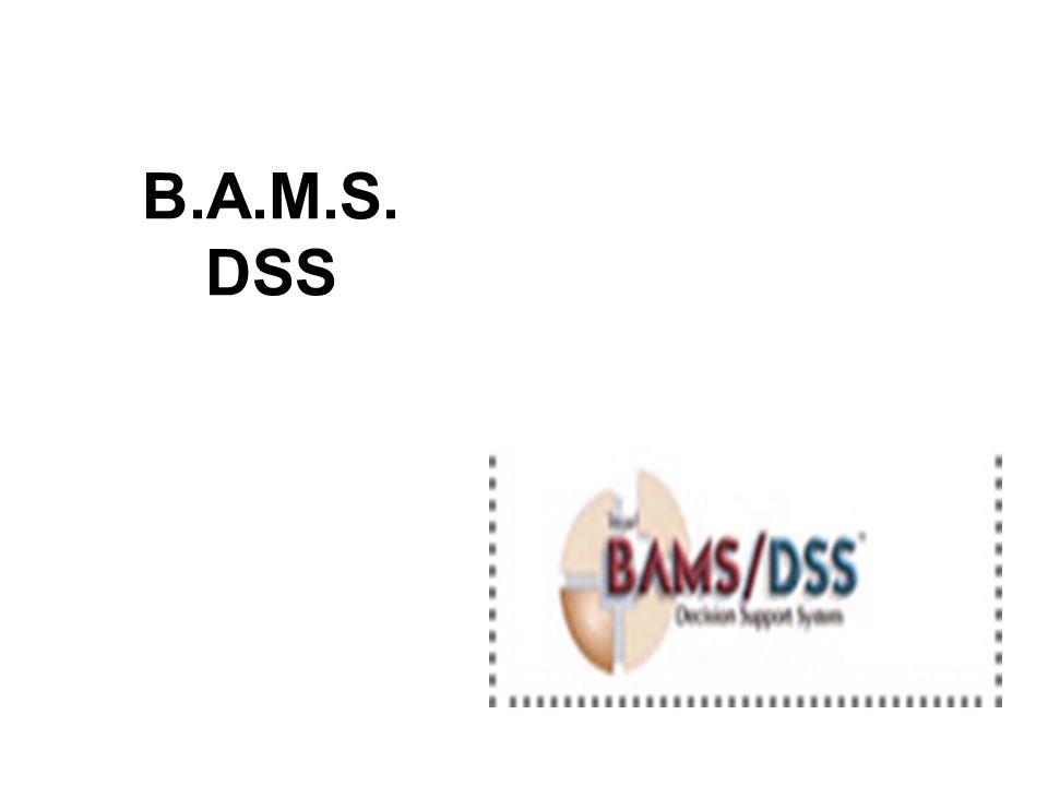 B.A.M.S. DSS