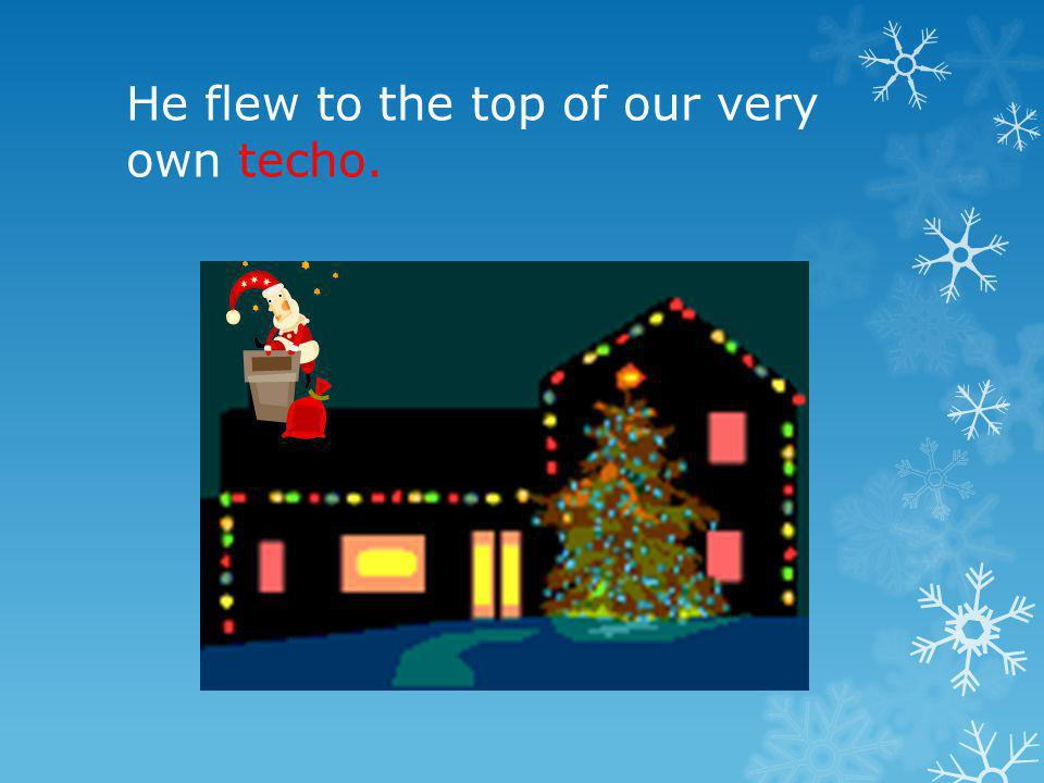He flew to the top of our very own techo.