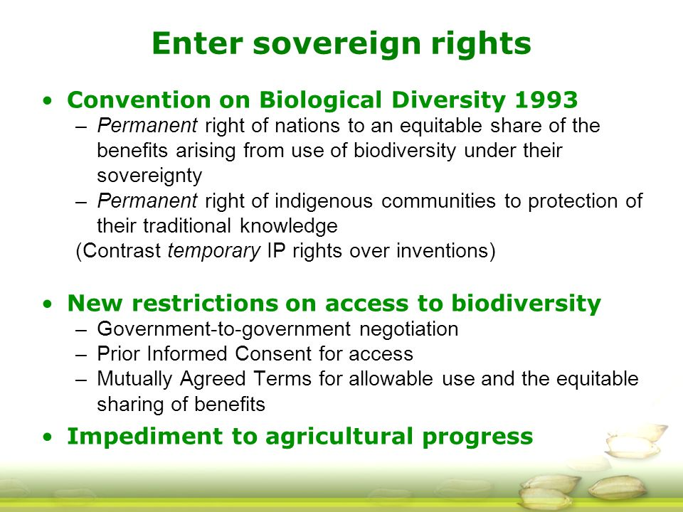 Enter sovereign rights Convention on Biological Diversity 1993 –Permanent right of nations to an equitable share of the benefits arising from use of biodiversity under their sovereignty –Permanent right of indigenous communities to protection of their traditional knowledge (Contrast temporary IP rights over inventions) New restrictions on access to biodiversity –Government-to-government negotiation –Prior Informed Consent for access –Mutually Agreed Terms for allowable use and the equitable sharing of benefits Impediment to agricultural progress