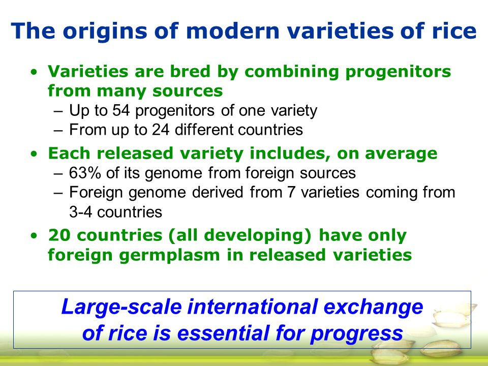 The origins of modern varieties of rice Varieties are bred by combining progenitors from many sources –Up to 54 progenitors of one variety –From up to 24 different countries Each released variety includes, on average –63% of its genome from foreign sources –Foreign genome derived from 7 varieties coming from 3-4 countries 20 countries (all developing) have only foreign germplasm in released varieties Large-scale international exchange of rice is essential for progress