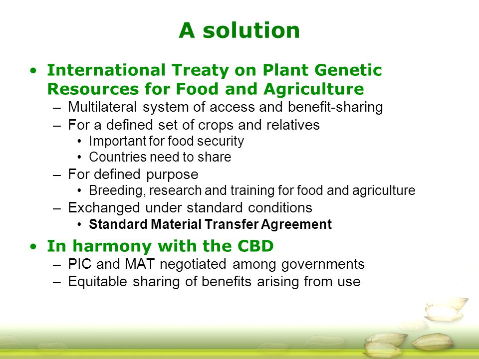 A solution International Treaty on Plant Genetic Resources for Food and Agriculture –Multilateral system of access and benefit-sharing –For a defined set of crops and relatives Important for food security Countries need to share –For defined purpose Breeding, research and training for food and agriculture –Exchanged under standard conditions Standard Material Transfer Agreement In harmony with the CBD –PIC and MAT negotiated among governments –Equitable sharing of benefits arising from use