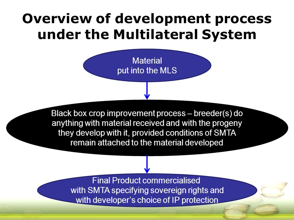 Material put into the MLS Black box crop improvement process – breeder(s) do anything with material received and with the progeny they develop with it, provided conditions of SMTA remain attached to the material developed Final Product commercialised with SMTA specifying sovereign rights and with developer's choice of IP protection Overview of development process under the Multilateral System