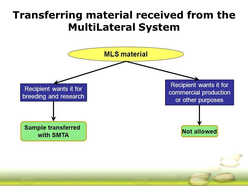 Recipient wants it for breeding and research Recipient wants it for commercial production or other purposes Sample transferred with SMTA Not allowed Transferring material received from the MultiLateral System MLS material