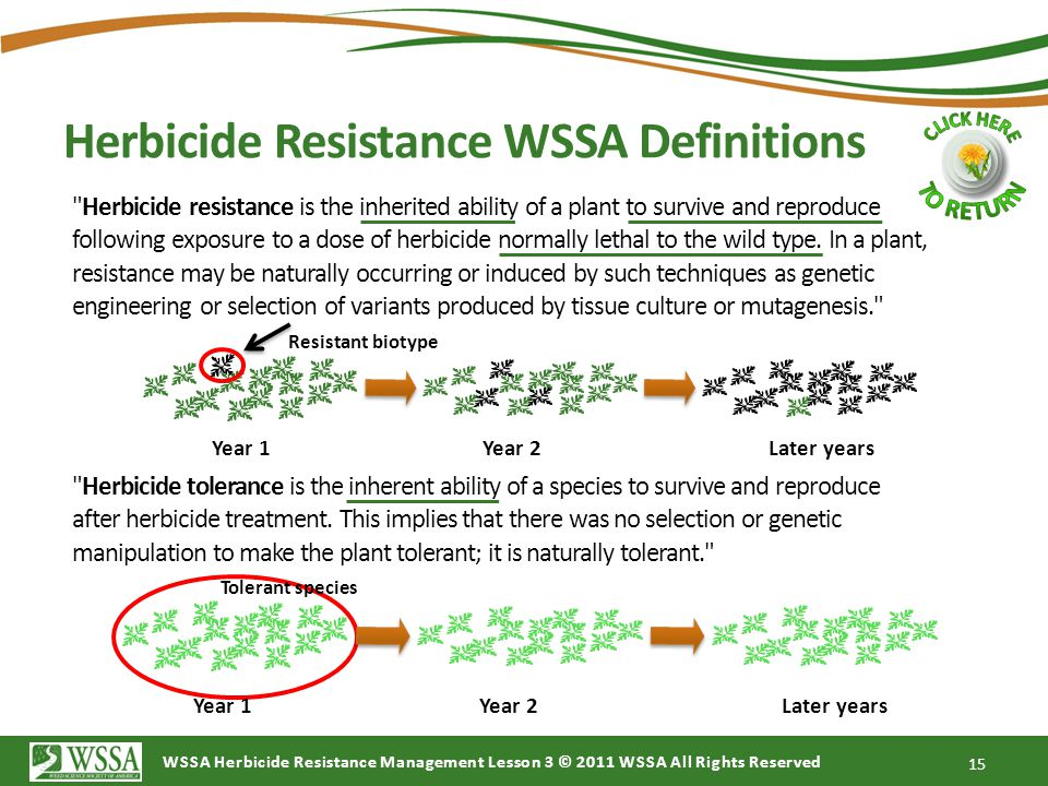 WSSA Herbicide Resistance Management Lesson 3 © 2011 WSSA All Rights Reserved Herbicide Resistance WSSA Definitions 15 Herbicide resistance is the inherited ability of a plant to survive and reproduce following exposure to a dose of herbicide normally lethal to the wild type.