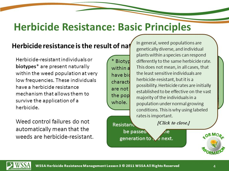 WSSA Herbicide Resistance Management Lesson 3 © 2011 WSSA All Rights Reserved Herbicide Resistance: Basic Principles 4 Herbicide resistance is the result of naturally occurring processes.