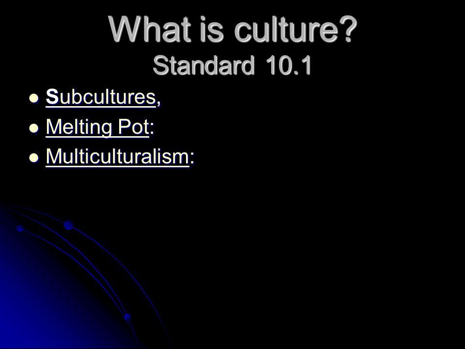 What is culture? Standard 10.1 S uuuu bbbb cccc uuuu llll tttt uuuu rrrr eeee ssss, M M eeee llll tttt iiii nnnn gggg P P P P oooo tttt: M uuuu llll t