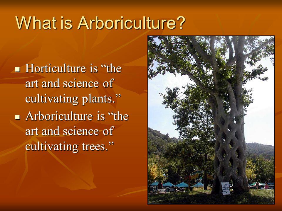 1 What is Arboriculture.