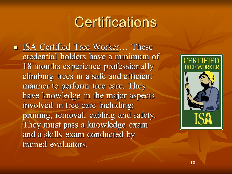 10 Certifications ISA Certified Tree Worker… These credential holders have a minimum of 18 months experience professionally climbing trees in a safe and efficient manner to perform tree care.