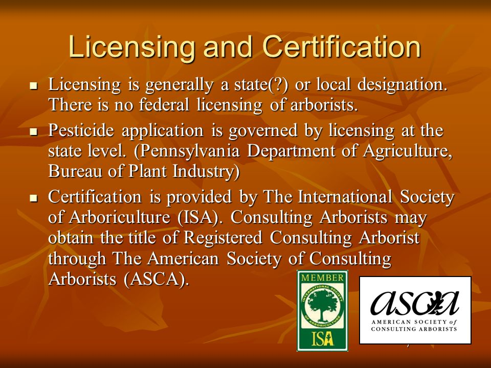 8 Certifications ISA Certified Arborist – These professional arborists have a minimum of three years experience in some aspect of tree care and have passed an exam developed by an international panel of experts.
