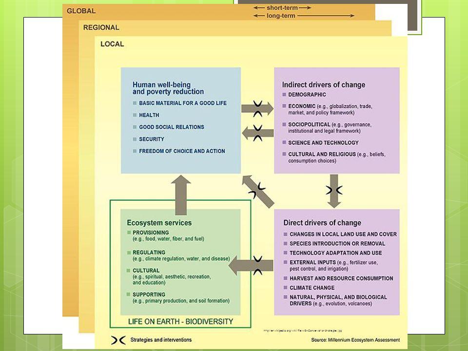 http://en.wikipedia.org/wiki/File:MEAConservationStrategies.jpg