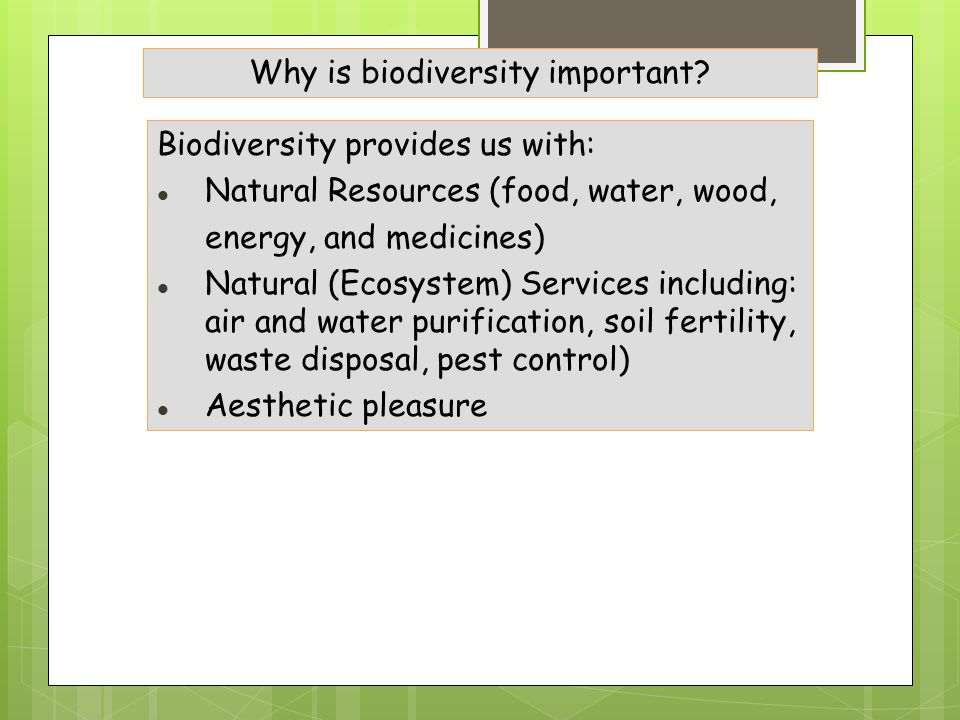 Biodiversity provides us with: Natural Resources (food, water, wood, energy, and medicines) Natural (Ecosystem) Services including: air and water purification, soil fertility, waste disposal, pest control) Aesthetic pleasure Why is biodiversity important?