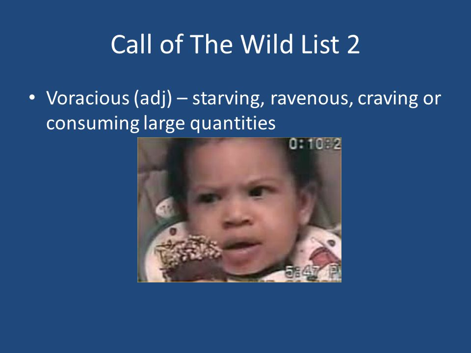Call of The Wild List 2 Voracious (adj) – starving, ravenous, craving or consuming large quantities