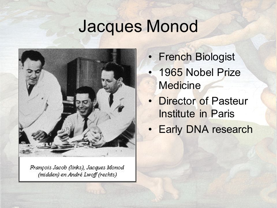 Jacques Monod French Biologist 1965 Nobel Prize Medicine Director of Pasteur Institute in Paris Early DNA research