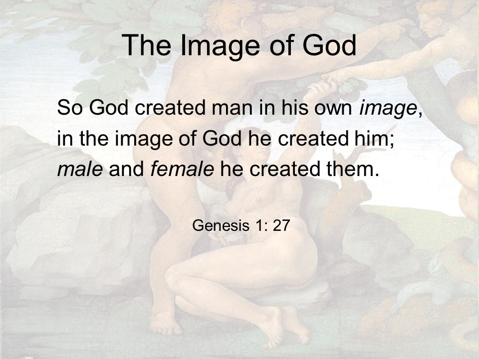 The Image of God So God created man in his own image, in the image of God he created him; male and female he created them. Genesis 1: 27