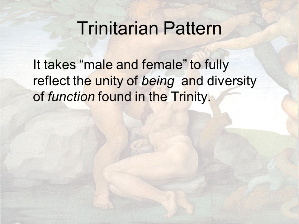 Trinitarian Pattern It takes male and female to fully reflect the unity of being and diversity of function found in the Trinity.