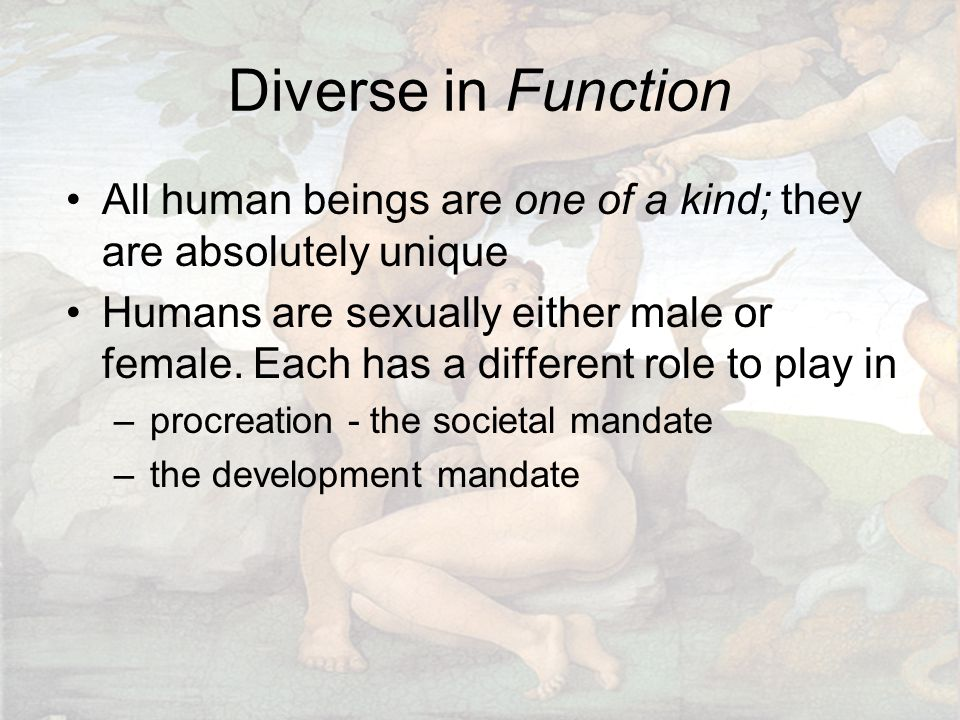 Diverse in Function All human beings are one of a kind; they are absolutely unique Humans are sexually either male or female. Each has a different rol