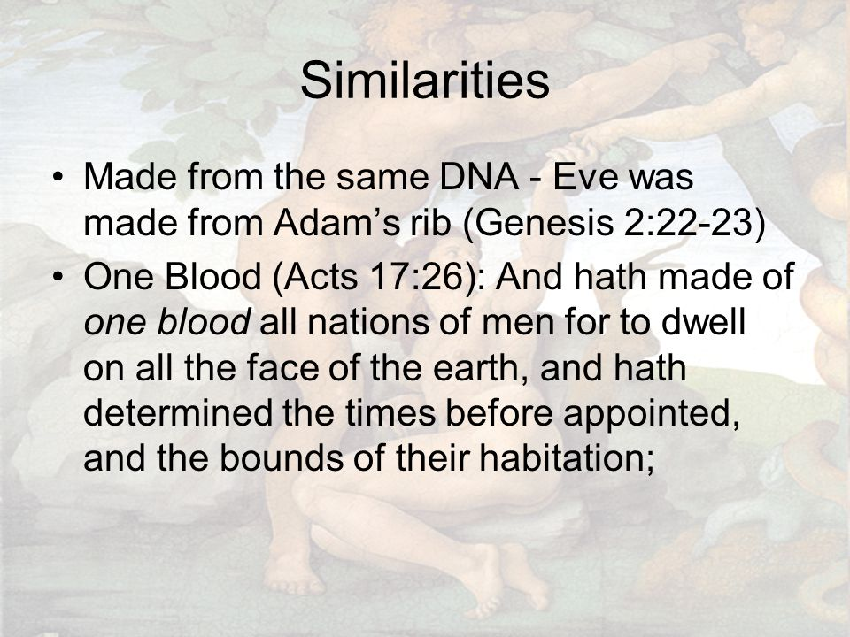 Similarities Made from the same DNA - Eve was made from Adam's rib (Genesis 2:22-23) One Blood (Acts 17:26): And hath made of one blood all nations of men for to dwell on all the face of the earth, and hath determined the times before appointed, and the bounds of their habitation;