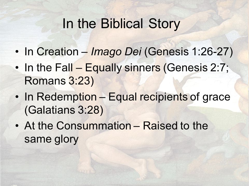In the Biblical Story In Creation – Imago Dei (Genesis 1:26-27) In the Fall – Equally sinners (Genesis 2:7; Romans 3:23) In Redemption – Equal recipients of grace (Galatians 3:28) At the Consummation – Raised to the same glory