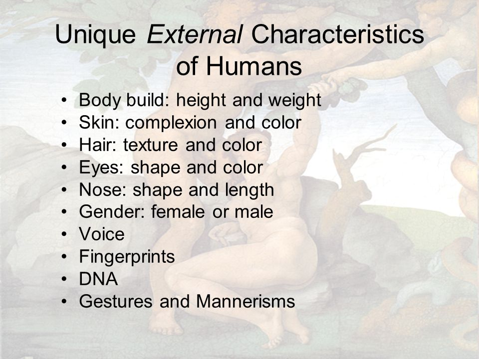 Unique External Characteristics of Humans Body build: height and weight Skin: complexion and color Hair: texture and color Eyes: shape and color Nose: shape and length Gender: female or male Voice Fingerprints DNA Gestures and Mannerisms