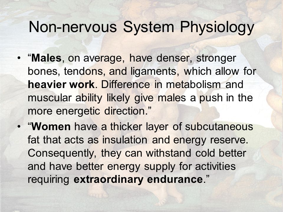 Non-nervous System Physiology Males, on average, have denser, stronger bones, tendons, and ligaments, which allow for heavier work.