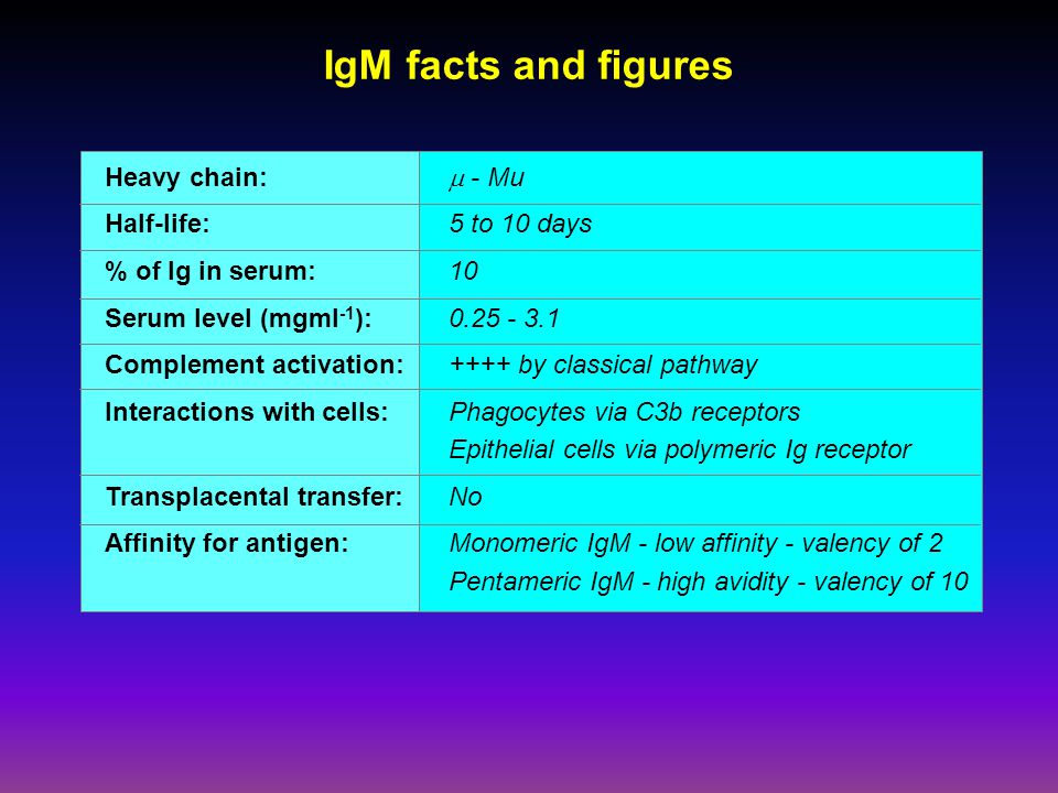 IgM facts and figures Heavy chain:  - Mu Half-life: 5 to 10 days % of Ig in serum:10 Serum level (mgml -1 ): 0.25 - 3.1 Complement activation:++++ by