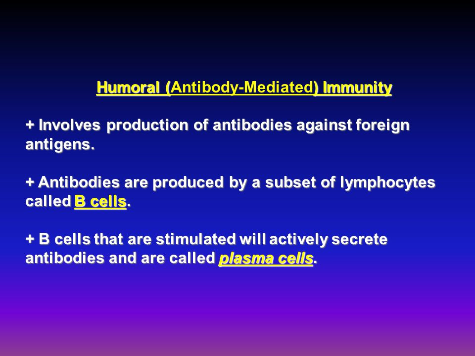 Humoral () Immunity Humoral (Antibody-Mediated) Immunity + Involves production of antibodies against foreign antigens. + Antibodies are produced by a
