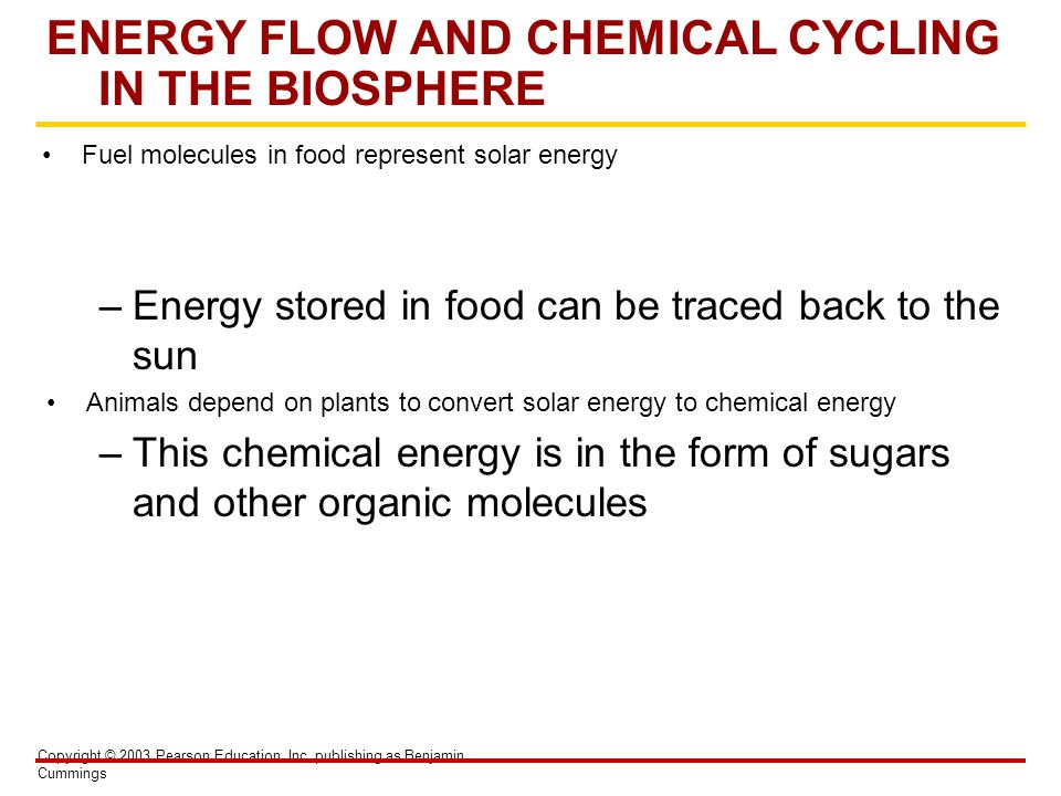 Copyright © 2003 Pearson Education, Inc. publishing as Benjamin Cummings ENERGY FLOW AND CHEMICAL CYCLING IN THE BIOSPHERE Fuel molecules in food repr