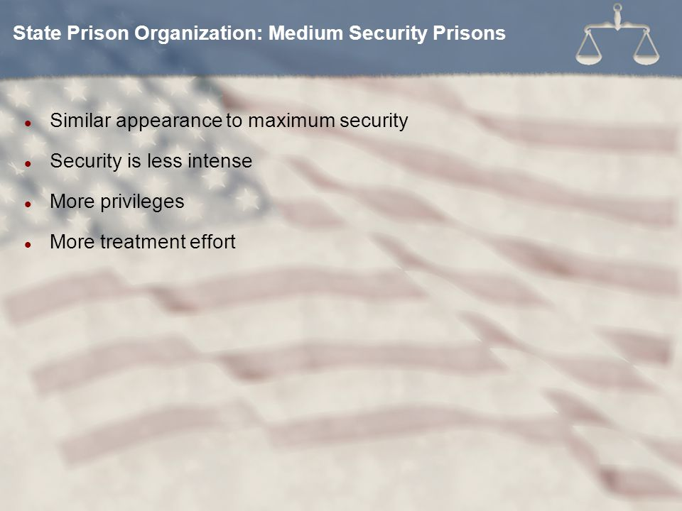 Similar appearance to maximum security Security is less intense More privileges More treatment effort State Prison Organization: Medium Security Prisons