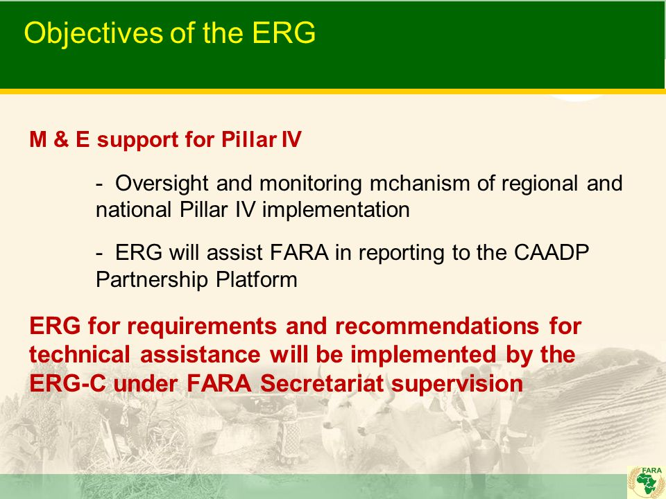 Objectives of the ERG M & E support for Pillar IV - Oversight and monitoring mchanism of regional and national Pillar IV implementation - ERG will ass