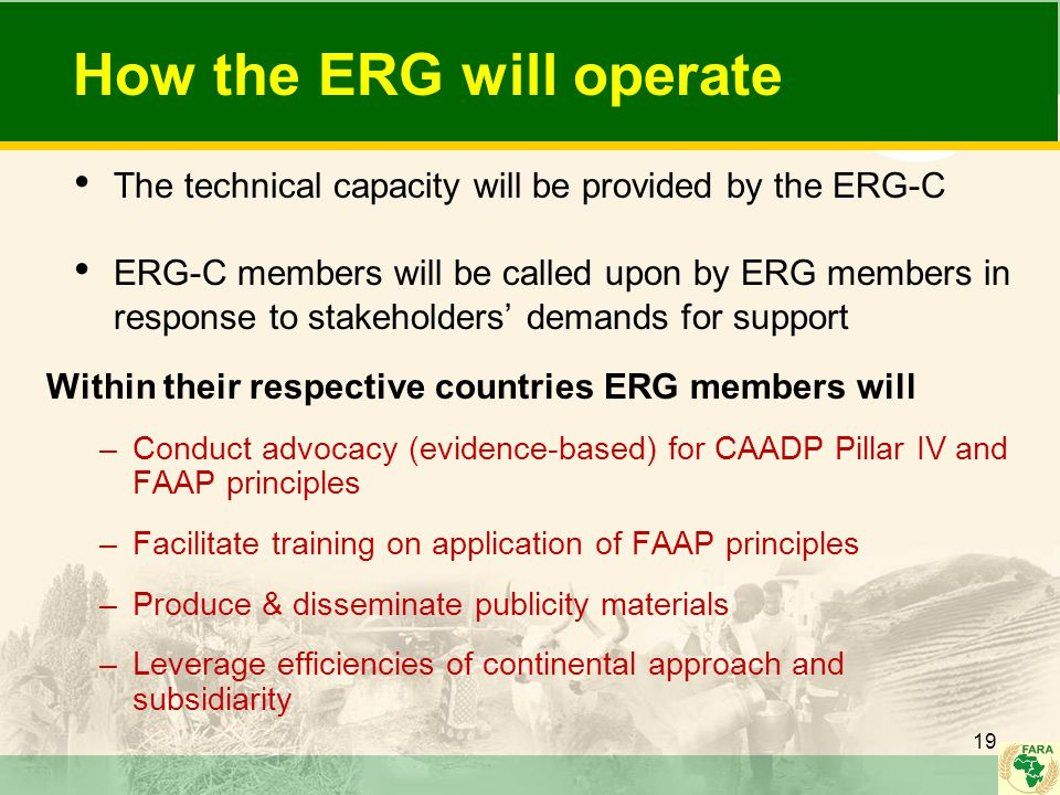 How the ERG will operate The technical capacity will be provided by the ERG-C ERG-C members will be called upon by ERG members in response to stakehol