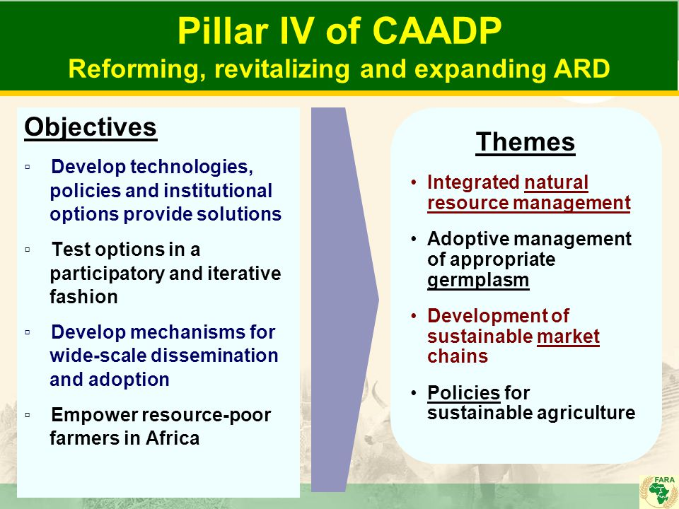 Pillar IV of CAADP Reforming, revitalizing and expanding ARDObjectives ▫ Develop technologies, policies and institutional options provide solutions ▫