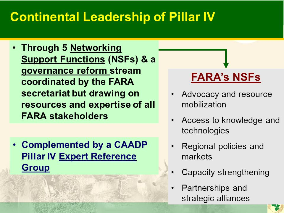 Continental Leadership of Pillar IV Through 5 Networking Support Functions (NSFs) & a governance reform stream coordinated by the FARA secretariat but