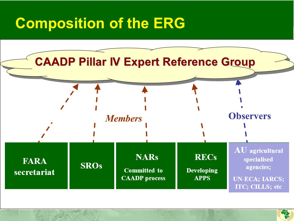 CAADP Pillar IV Expert Reference Group FARA secretariat SROs RECs AU agricultural specialised agencies; UN-ECA; IARCS; ITC; CILLS; etc NARs Committed