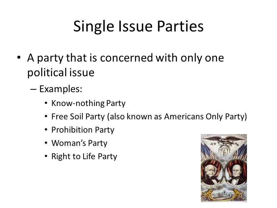 Single Issue Parties A party that is concerned with only one political issue – Examples: Know-nothing Party Free Soil Party (also known as Americans O