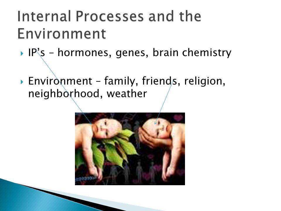  IP's – hormones, genes, brain chemistry  Environment – family, friends, religion, neighborhood, weather
