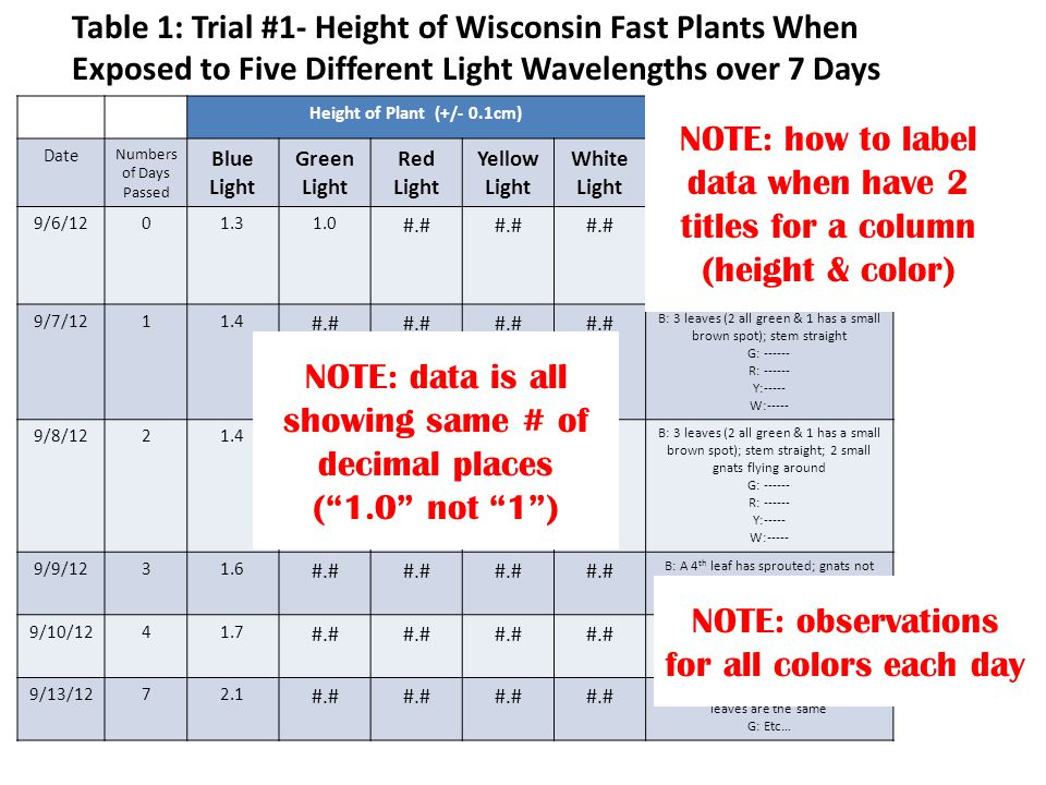 Height of Plant (+/- 0.1cm) Date Numbers of Days Passed Blue Light Green Light Red Light Yellow Light White Light Observations 9/6/1201.31.0 #.# B: 3