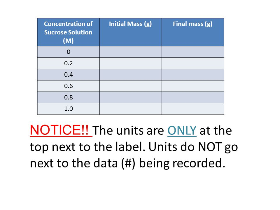 Concentration of Sucrose Solution (M) Initial Mass (g)Final mass (g) 0 0.2 0.4 0.6 0.8 1.0 NOTICE!.