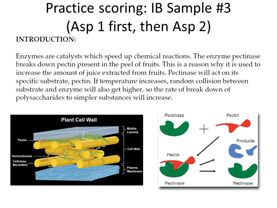 Practice scoring: IB Sample #3 (Asp 1 first, then Asp 2)
