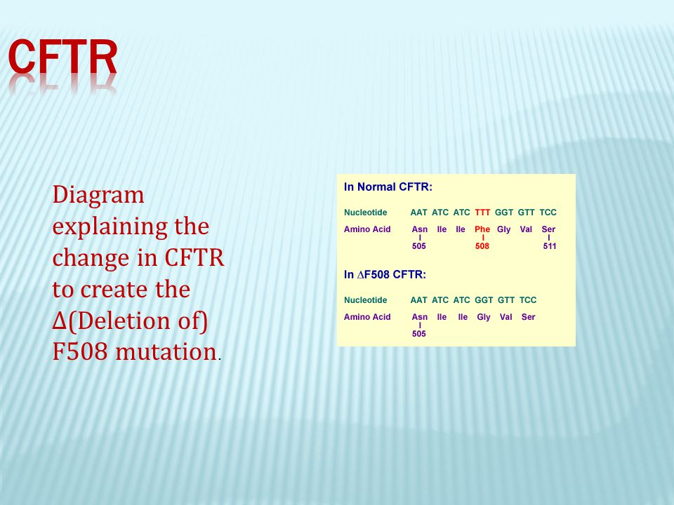 CF Mutations can be classified by the effect they have on the CFTR protein. 8