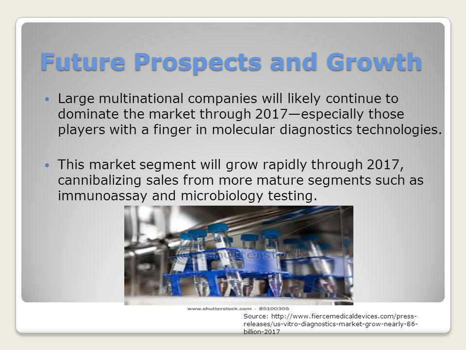 Future Prospects and Growth Large multinational companies will likely continue to dominate the market through 2017—especially those players with a fin