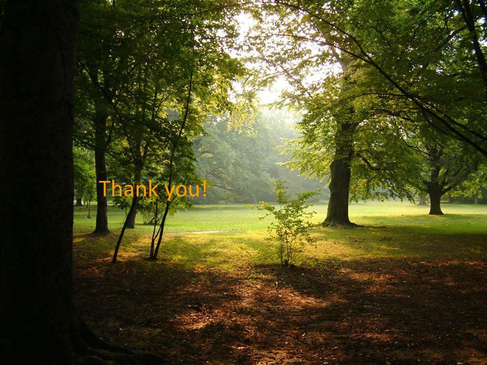 Ευχαριστώ! Thank you!