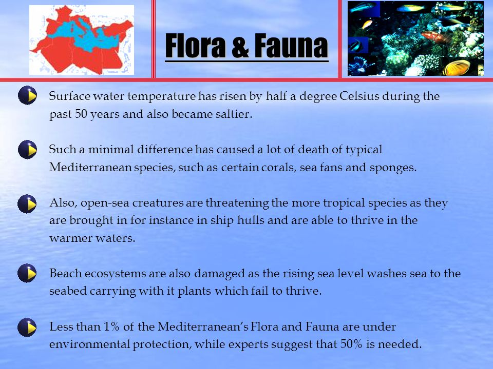 Flora & Fauna Surface water temperature has risen by half a degree Celsius during the past 50 years and also became saltier. Such a minimal difference