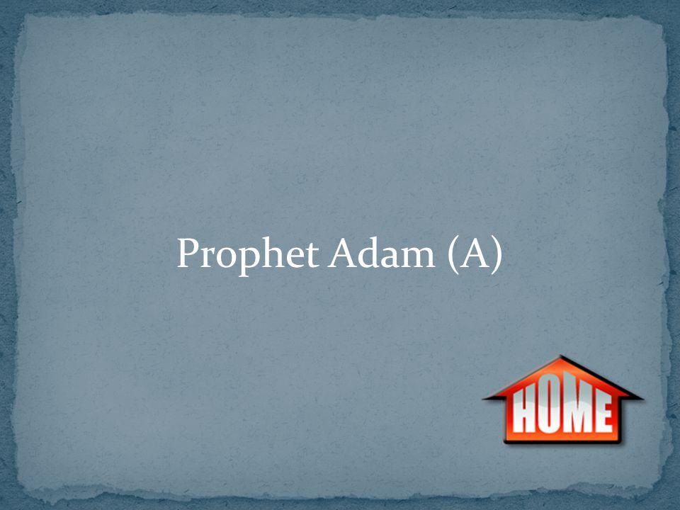 Prophet Adam (A)