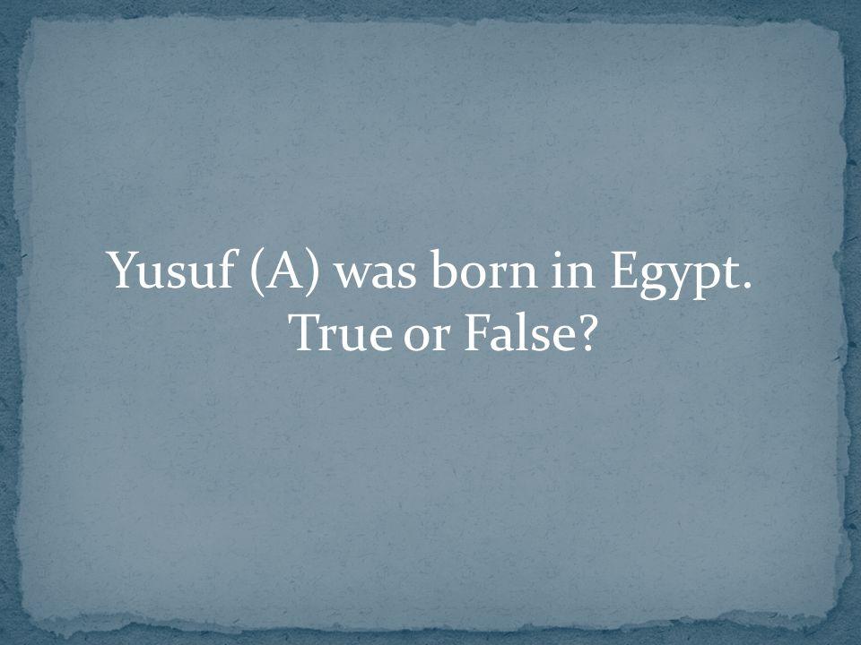 Yusuf (A) was born in Egypt. True or False?