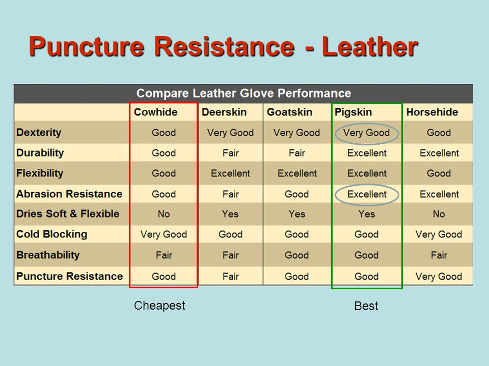 Puncture Resistance - Leather Cheapest Best