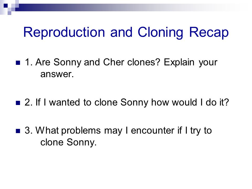 Reproduction and Cloning Recap 1. Are Sonny and Cher clones? Explain your answer. 2. If I wanted to clone Sonny how would I do it? 3. What problems ma