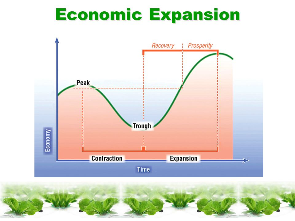 Phases of Business Cycles  Expansion  Peak  Contraction  Trough
