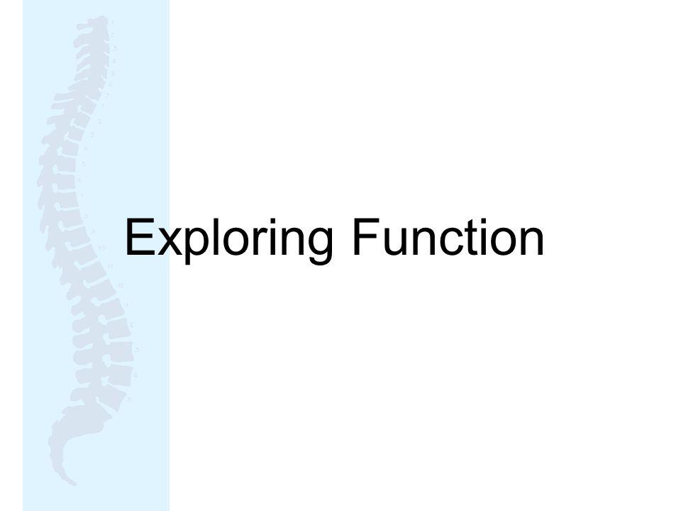 Exploring Function