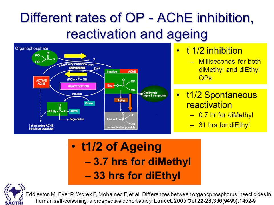 Dr Bishan Rajapakse - South Asian Clinical Toxicology Research Collaboration Different rates of OP - AChE inhibition, reactivation and ageing t 1/2 in