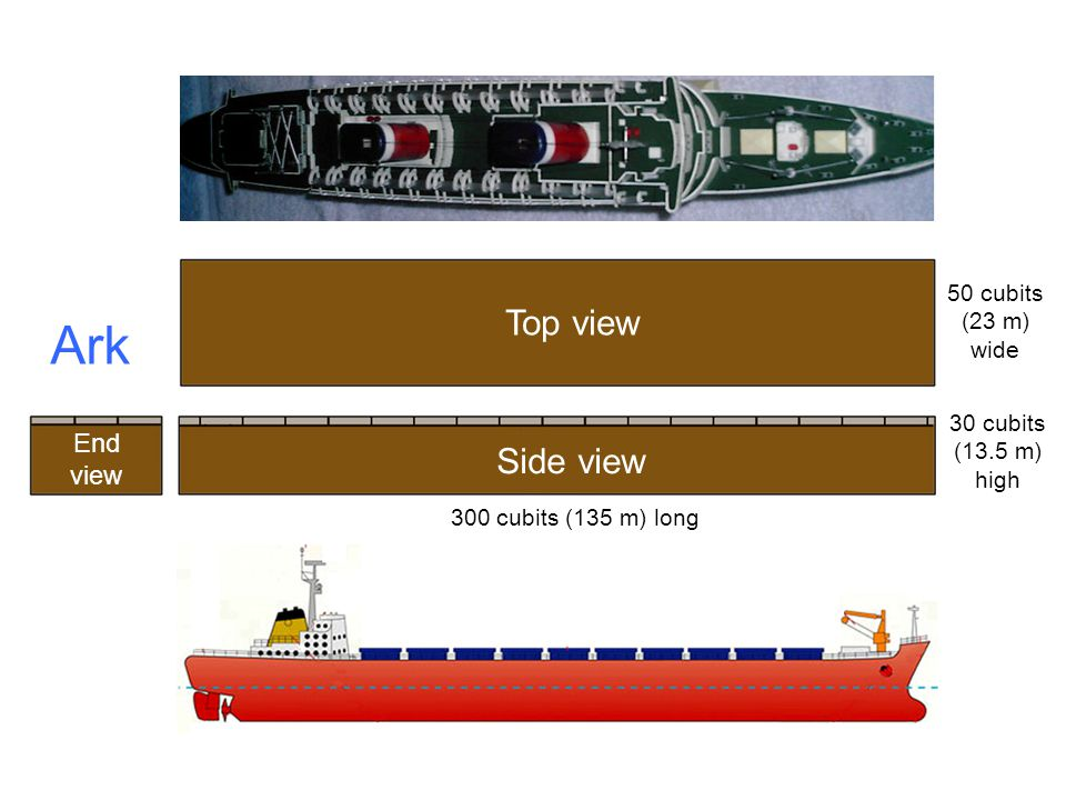 Ark Side view Top view End view 50 cubits (23 m) wide 30 cubits (13.5 m) high 300 cubits (135 m) long